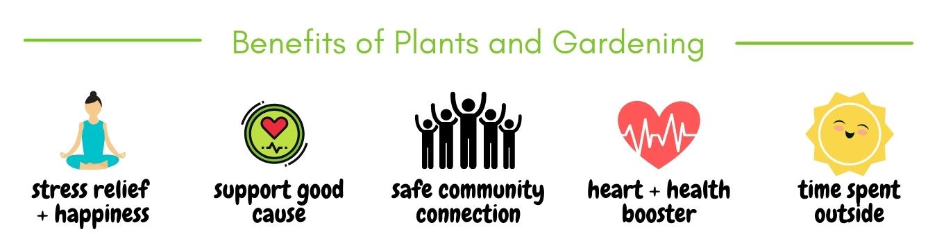 Benefits_of_Plants